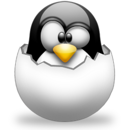 Linux Kernel Source